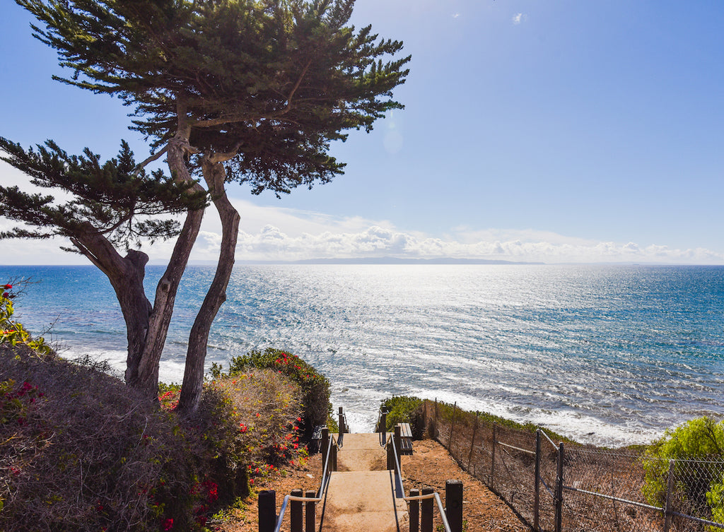 Santa Barbara Mesa Lane Beach Steps // Blake Bronstad Photography