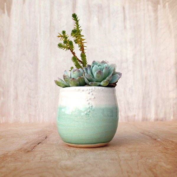 Little Barnacle Planter Pot Ceramics - Unurth, The Santa Barbara Company - 3