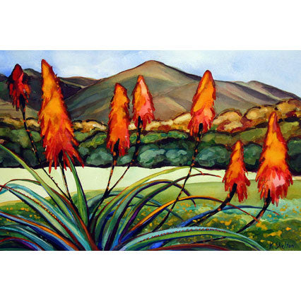 Blooming Aloes Giclee Print Karin Shelton - Karin Shelton, The Santa Barbara Company