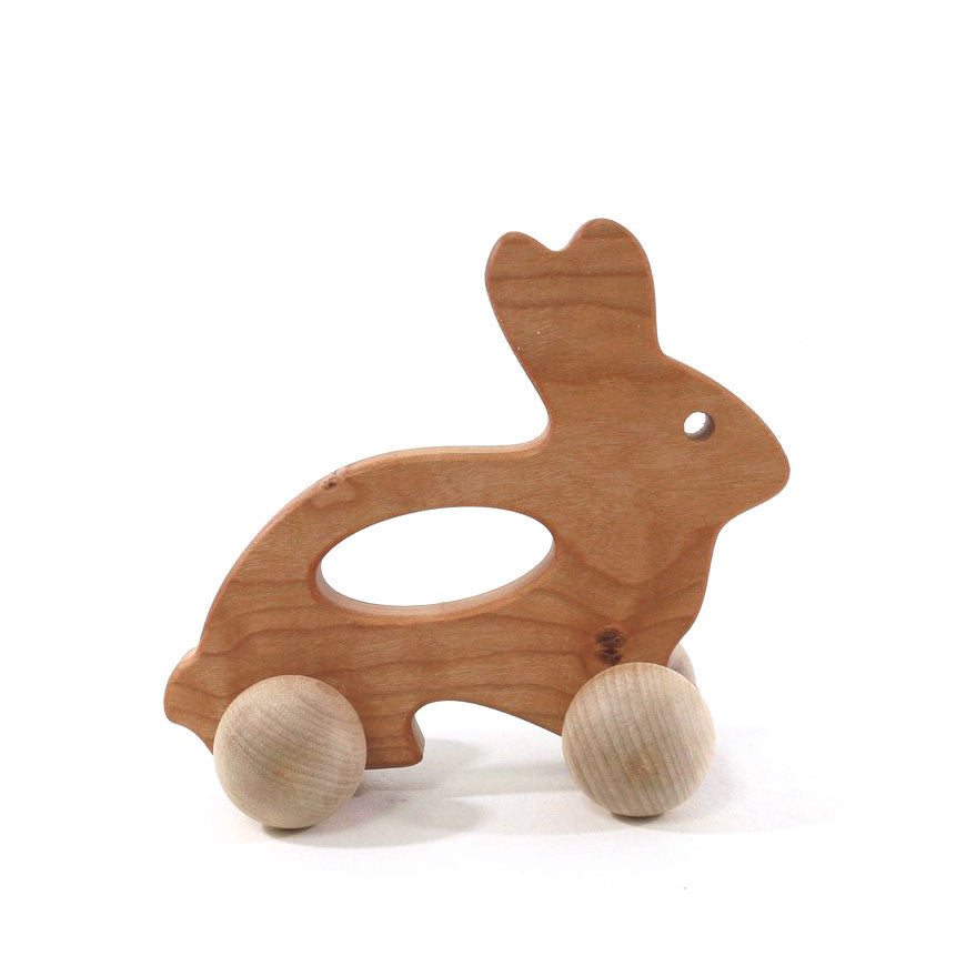 Bunny Push Toy