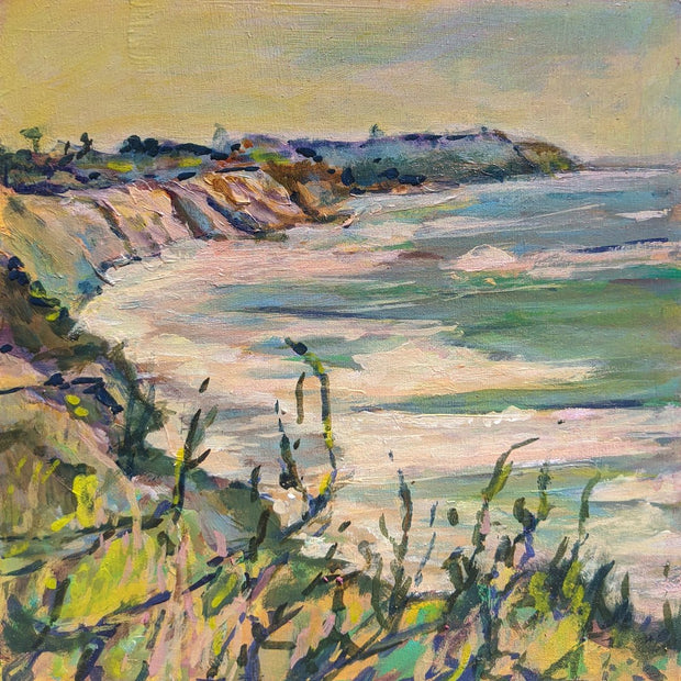 Carlsbad California Bluffs Art Print