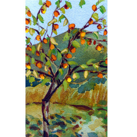 Persimmon Tree Print Karin Shelton - Karin Shelton, The Santa Barbara Company