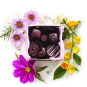 Organic Raw Chocolate Truffles - 6 pc Love Collection
