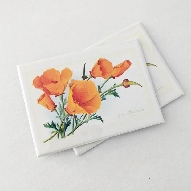 Vintage California Poppies Magnet
