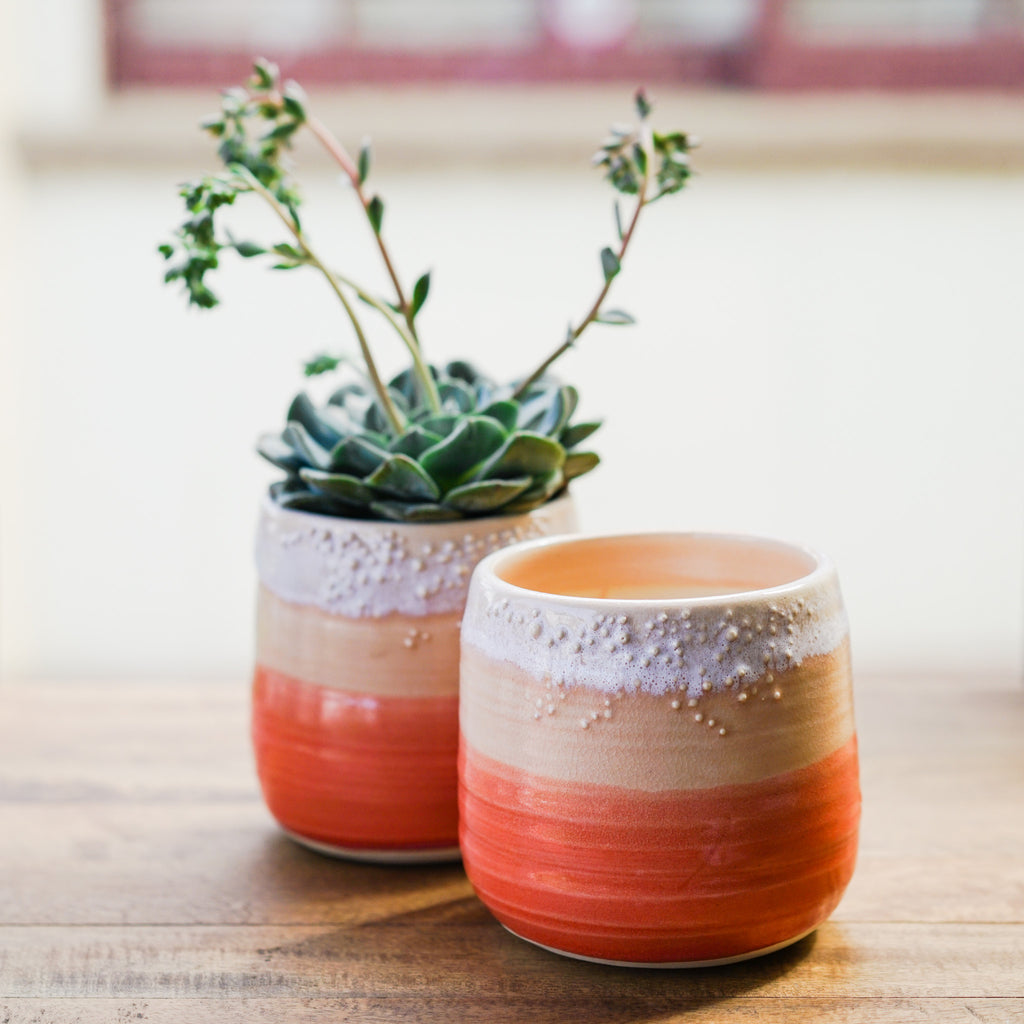 Little Barnacle Planter Pot - Sunset Ceramics - Unurth, The Santa Barbara Company - 2