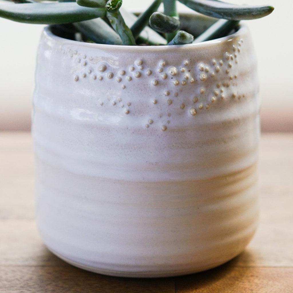 Little Barnacle Planter Pot - Alabaster White Ceramics - Unurth, The Santa Barbara Company