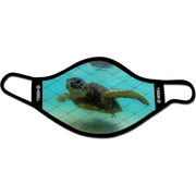 Dave Nelson Turtle Mask
