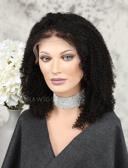 Afro Kinky Curly Human Hair Full Lace Wigs Natural Black Hair Color