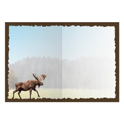 Advice from a Moose Greeting Card