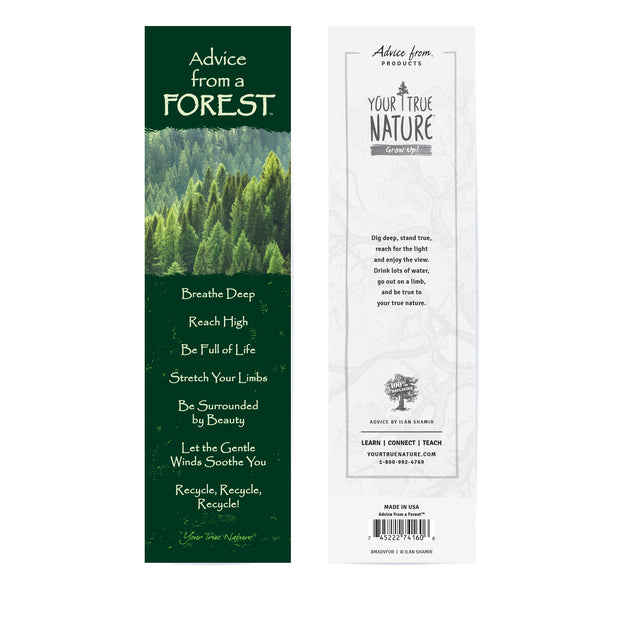 Classic Forest Laminated Bookmark
