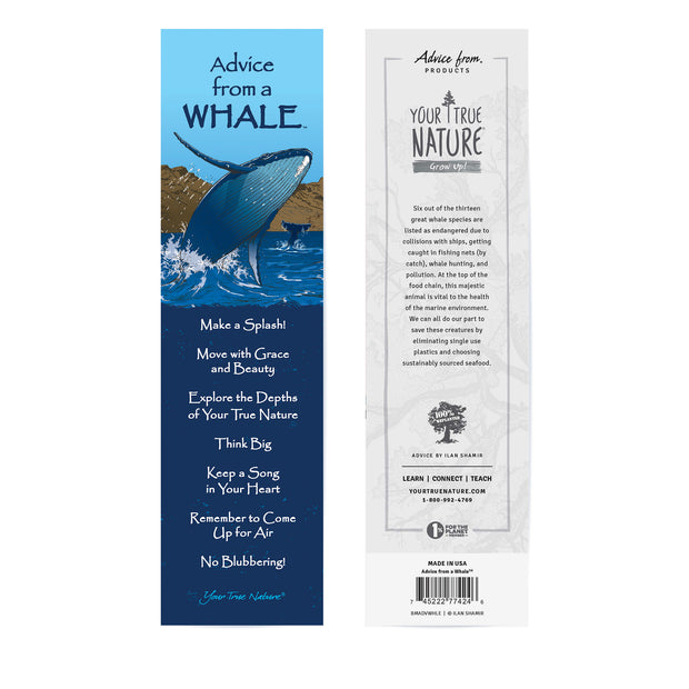 Advice from a Whale Laminated Bookmark