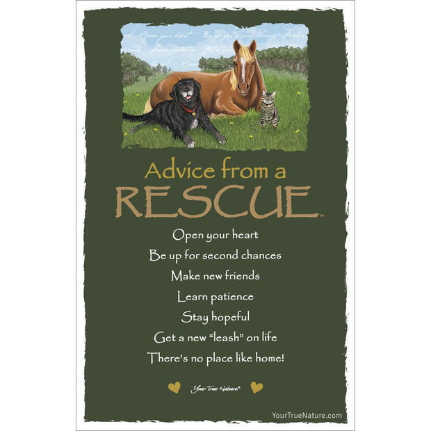 Classic Rescue Frameable Art Card
