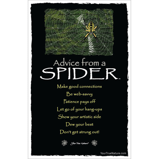 Classic Spider Frameable Art Card