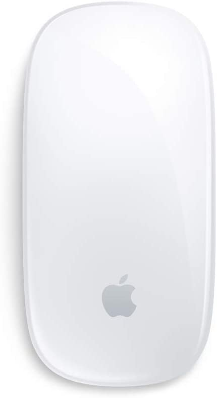 Apple Wireless Magic Mouse (Used)