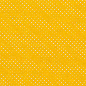 Yellow polka dot Jersey