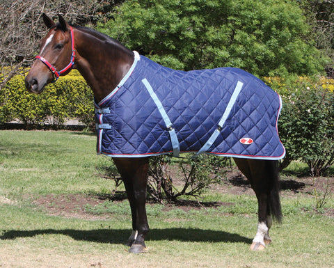 Zilco Defender Comforter Stable Rug. 5 star warmth rating, quilted under rug. Known to wash and wear again and again. Great value.