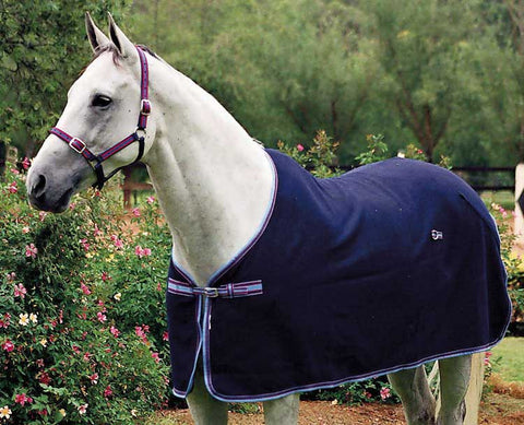 Quality 100% wool dress & stable horse rug by Zilco
