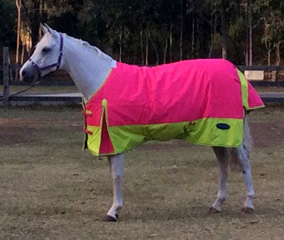 "Wild Brumby Saddlery Geelong and Werribee Horse Supplies. Minicraft Frostbreaker Mini Horse Rug - Hot Pink/Lime.  Absolutely the best fitting rug on the market for miniature horses and ponies. Available in small or large  1200 Denier Ripstop outer breathable/waterproof 300g poly fill.  3'0"", 3'3"", 3'6"", 3'9"", 4'0"" and 4'3""."