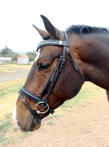 KPH Bently Bridlehead has an exquisite V shape browband with relief set crystals and side badges. The nose band is the ever popular crank Hanoverian with soft leather padding. Black