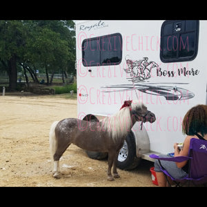 Boss Mare Trailer DECAL
