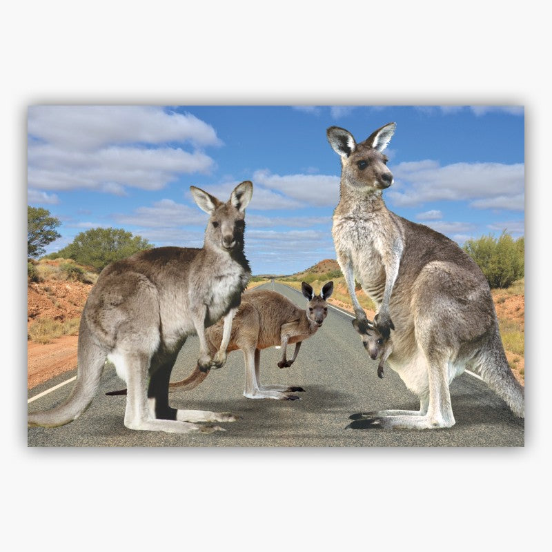POSTCARD - 3D KANGAROO CROSSING 44-01-2539.