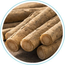 Burdock Root - Steves