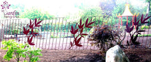 Load image into Gallery viewer, Clôture / Fence Red Dragon
