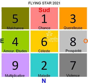 Consultations Flying Star