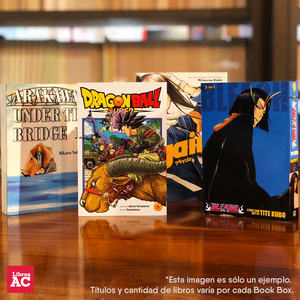 Manga Book Box