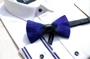 Royal Blue Feather Bow Tie