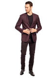 50 Shades of Plum Slim Fit Sport Jacket