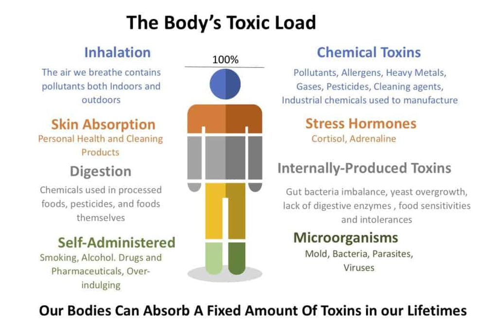 Toxic load or Total Body Load Explained...