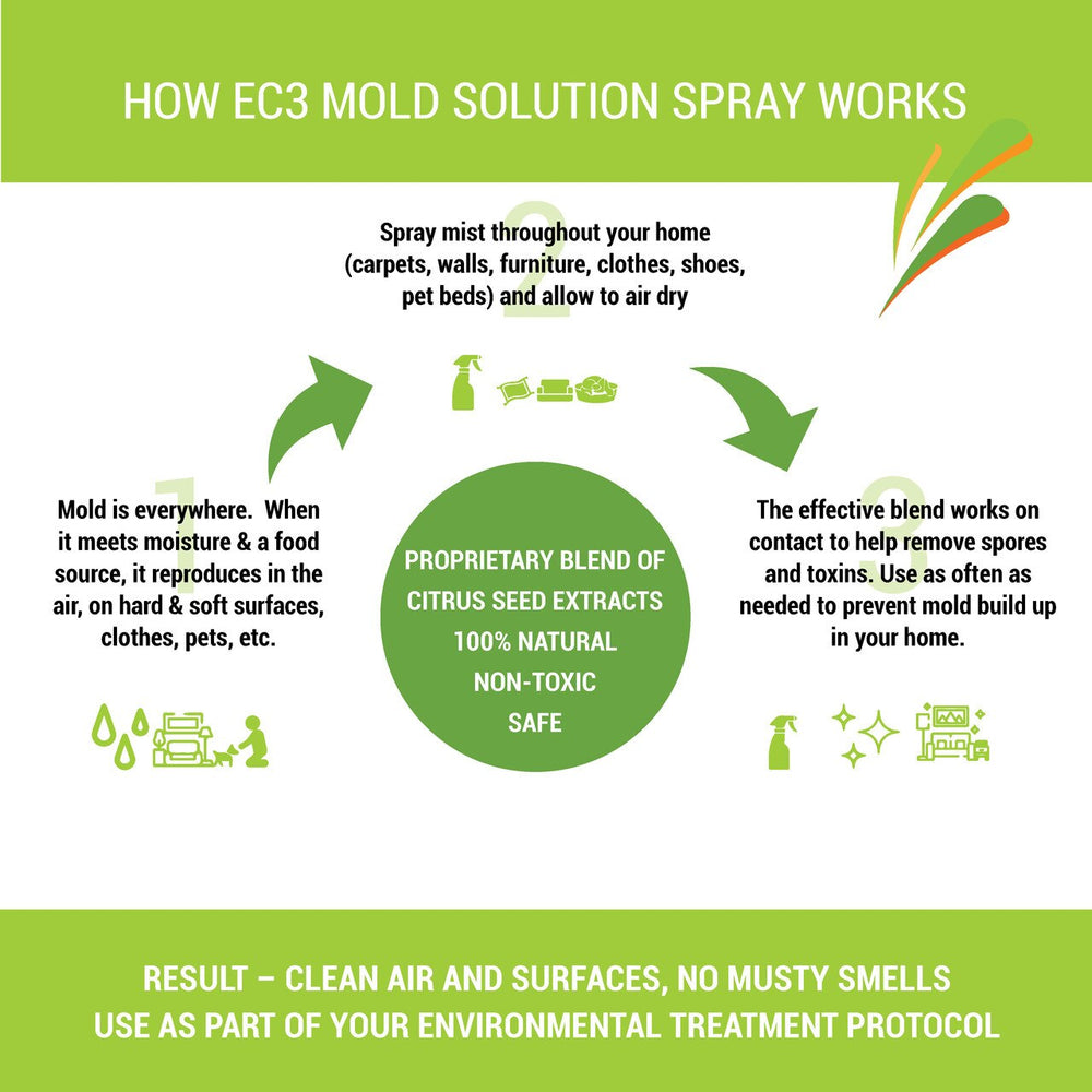 EC3 Mould Solution Spray