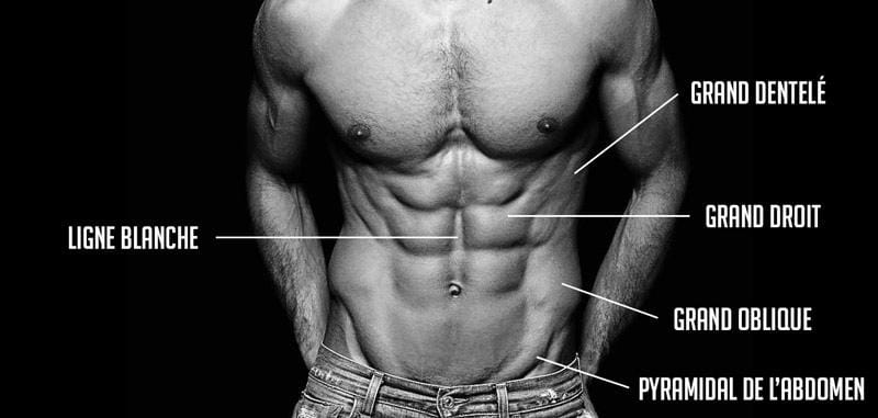"""Image search result for """"abs zones"""""""