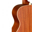 J.N Guitars Ezra Series EZR-J Acoustic Guitar in Sunburst