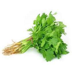 Coriander Local each