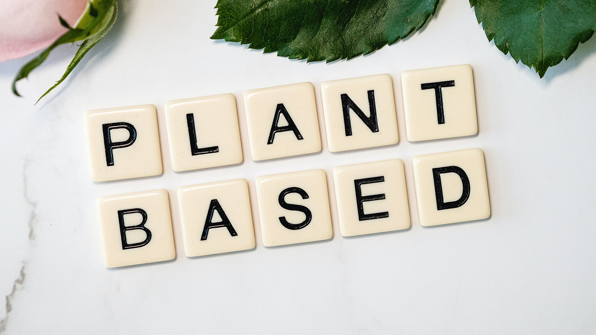 Plant Based in tekst