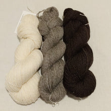 Load image into Gallery viewer, Three skeins of DK weight yarn, cream, medium grey and dark grey