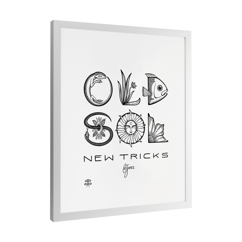 Cat James - Old Sol New Tricks - Framed Art