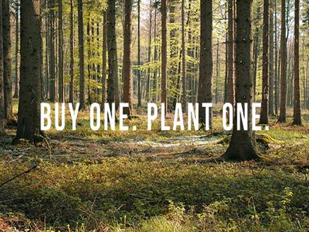 Buy One Plant One- Jamstik+ and Woodchuck USA