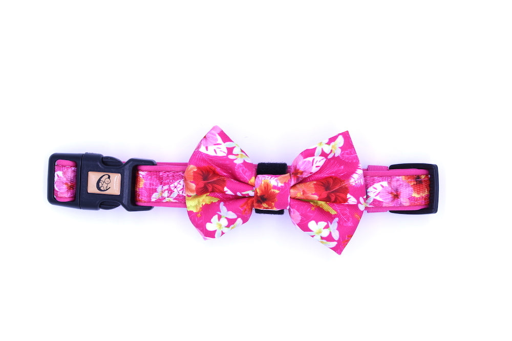 Pink Rosemallows Collar with Bow tie