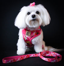 Load image into Gallery viewer, Pink Rosemallows Adjustable Harness