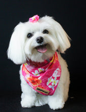 Load image into Gallery viewer, Pink Rosemallows Cooling Bandana