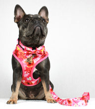 Load image into Gallery viewer, Pink Rosemallows Bow Tie