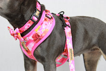 Load image into Gallery viewer, Pink Rosemallows Collar with Bow tie