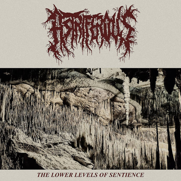 Astriferous - The Lower Levels of Sentience (CD)