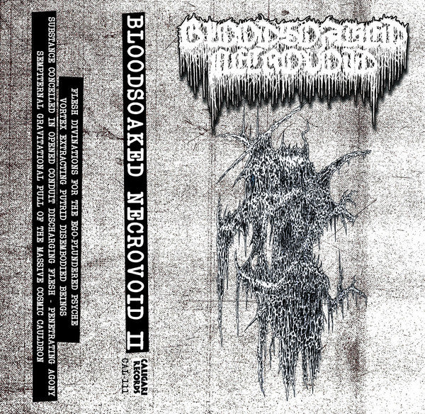 Bloodsoaked Necrovoid - Demo II (Tape)