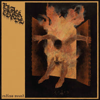 Black Curse - Endless Wound (CD)