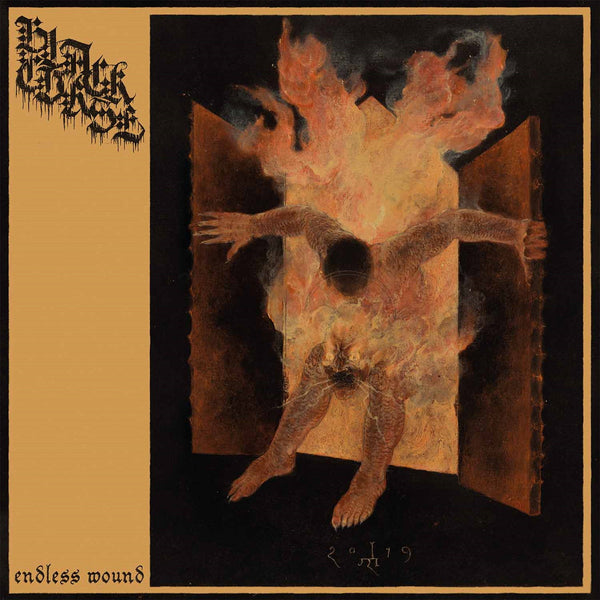 Black Curse - Endless Wound (LP)