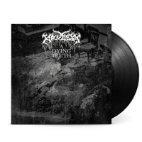 KRUELTY - A Dying Truth (LP) (Black)